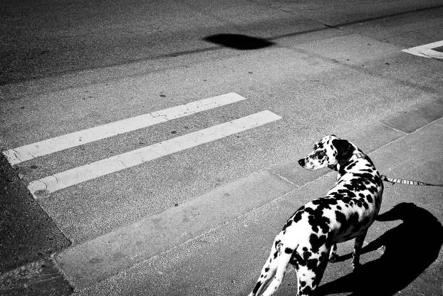 street-photography-geometric8