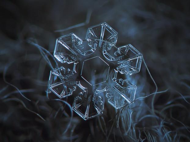 snowflake-macro-photography1