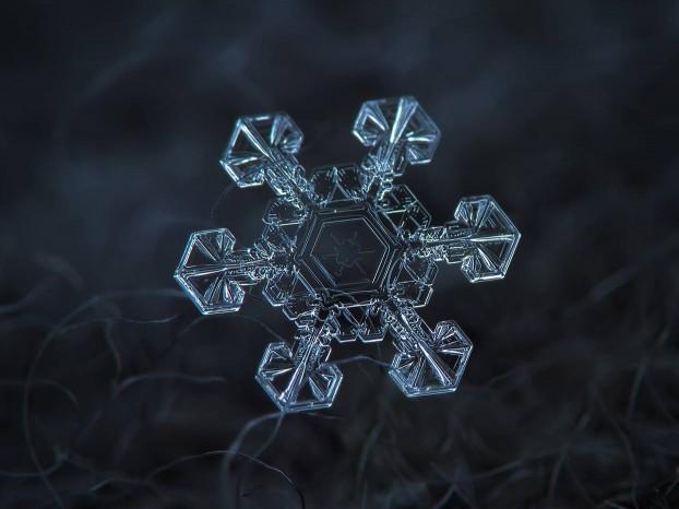 snowflake-macro-photography3
