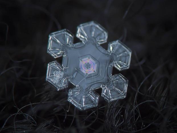 snowflake-macro-photography5