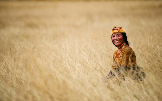 Tibetan nomad on the grasslands. Tibetan plateau