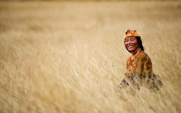 Tibetan nomad on the grasslands. Tibetan plateau