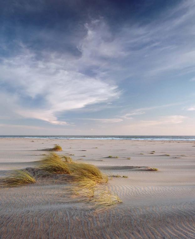 medium-format-landscapes3