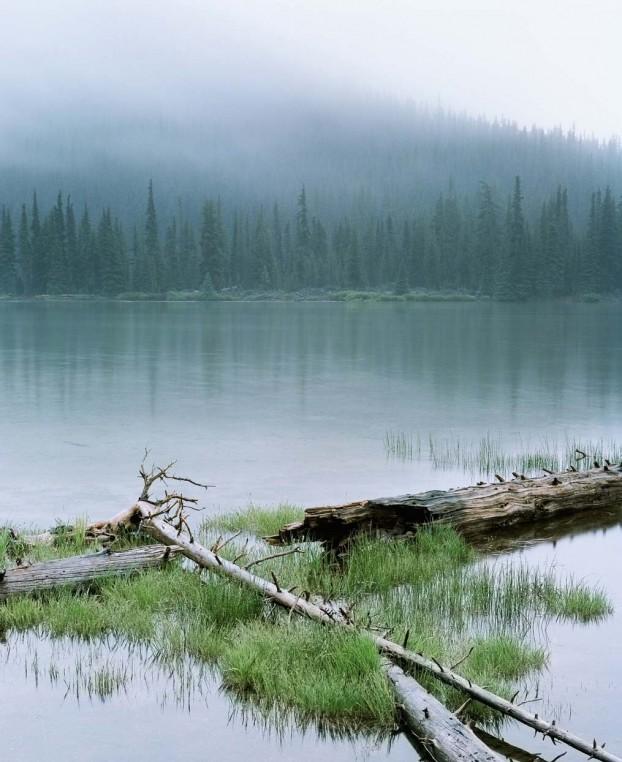 medium-format-landscapes6