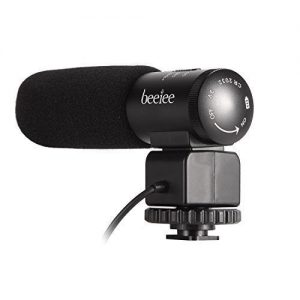 Beeiee Microphone