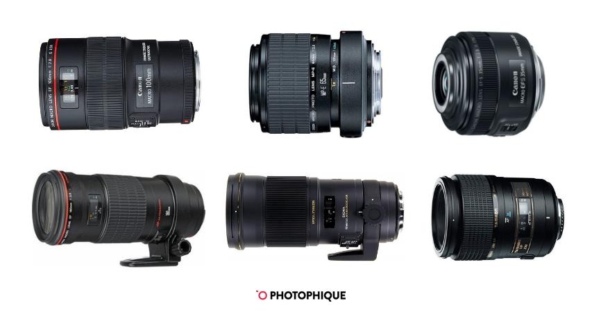 Best Macro Lenses for Canon DSLRs