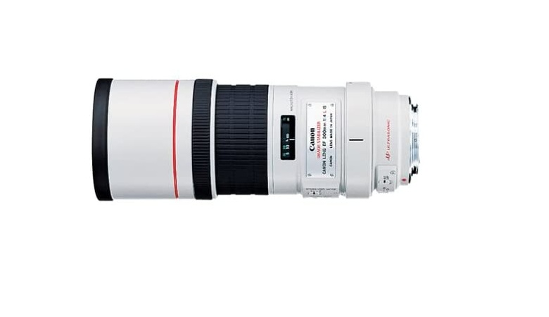 Canon EF 300mm f/4L IS USM Telephoto Fixed Lens