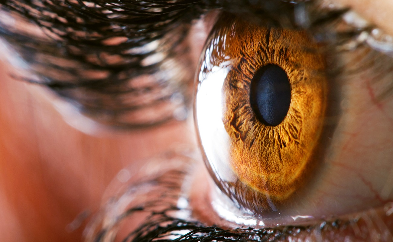macro photo of eye